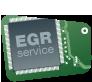EGR Service Badge B