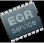 EGR Service Badge A